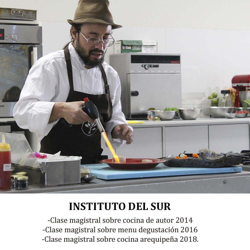 INSTITUTO DEL SUR